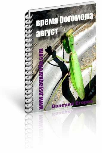 книга Валерия Егорова
